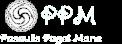 Taro kortos – Pasaulis Pagal Mane Logo